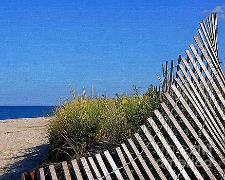 Beach Fence Curves by Lori Pessin Lafargue