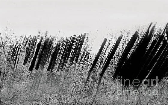 Sharon Williams Eng - Beach Fence Shadows Black and White 300