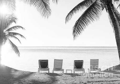 Tim Hester - Beach Holiday Deckchairs Black and White