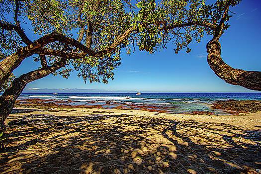 Beach in the Shade by John Bauer