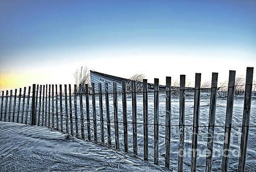 Beach Patrol by Diane LaPreta