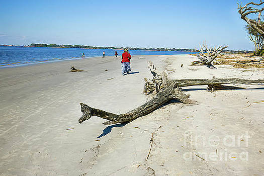 Beach Scene In Winter by Felix Lai