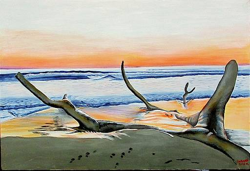 Beach Sunset by Suzahn King