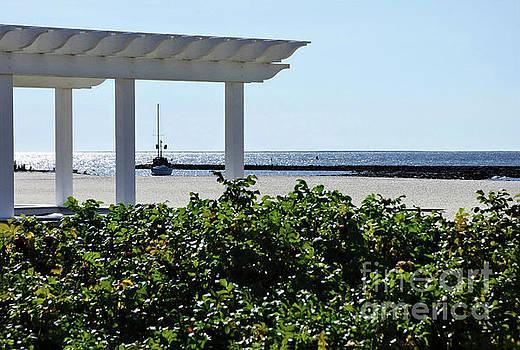Sharon Williams Eng - Beach View 300