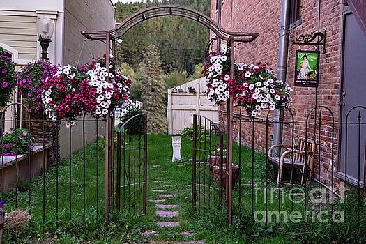 Beautiful Alley by Carol Bilodeau