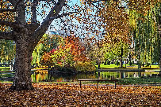 Toby McGuire - Beautiful Autumn Colors in the Boston Public Garden Boston MA