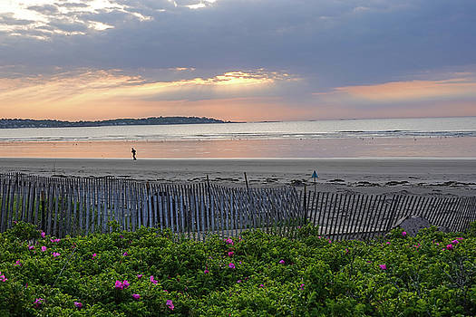 Toby McGuire - Beautiful Sunrise over Nahant Beach Reflection Nahant MA Fence