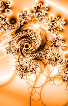 Beautiful swirl  by Ronni Dewey