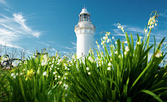 Beautiful Table Cape Lighthouse in Tasmania. by Rob D