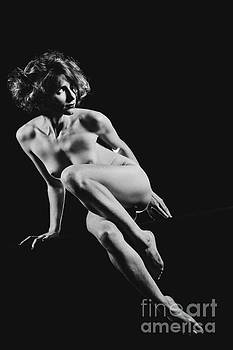 Beautiful Woman fineart naked. Photograph in Black and white #9756 by William Langeveld