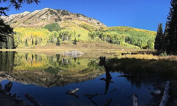 Beaver Pond Reflections by Carol Milisen