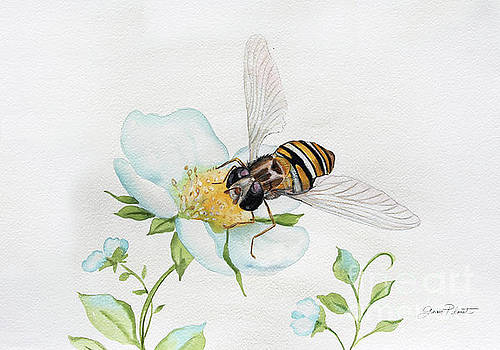 Bee In Watercolor by Jean Plout