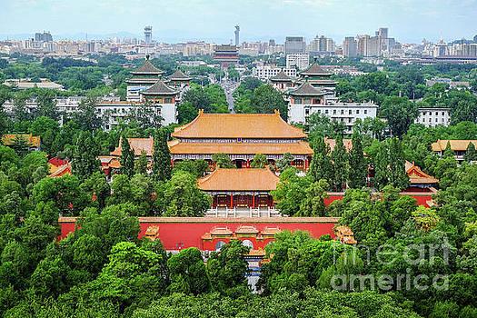Beijing cityscape by Iryna Liveoak