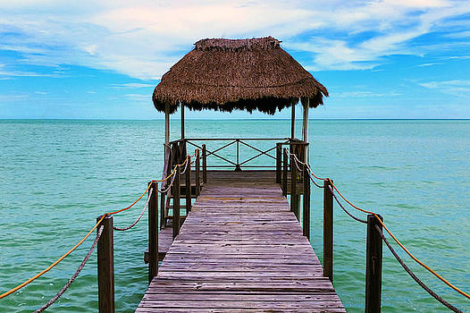 Belize Palapa by Jackson Ball