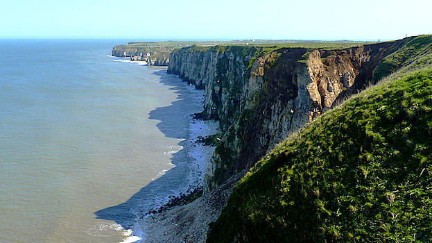 Bempton Cliffs towards Thornwick Bay, Yorkshire Coast by Chris Gill