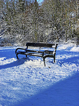 Bench In The Snow by Lachlan Main