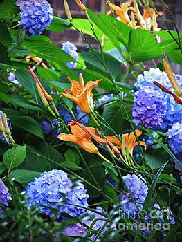 Bennett Avenue in Summer Bloom 1   by Sarah Loft