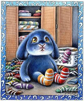 Christine Karron - Benny Blue Missing Socks