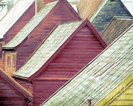 Bergen Rooftops in the Rain by Susan Lafleur