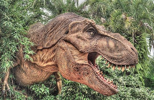 Beware of the Dinosaur by Randy Dyer