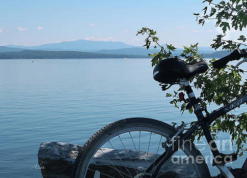 Felipe Adan Lerma - Bicycle View of Mt Mansfield from Island Line Trail Detail