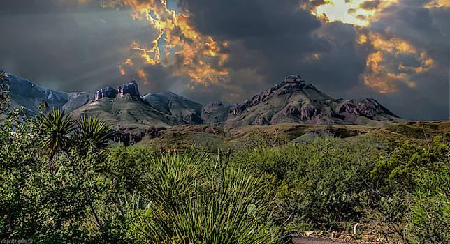 Big Bend National Park by Gaylon Yancy