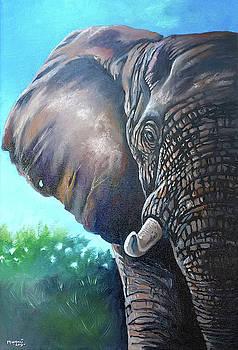 Big Ear by Anthony Mwangi