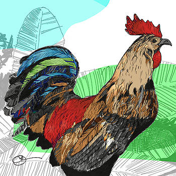 Big Island Rooster 2 by Lucas Boyd