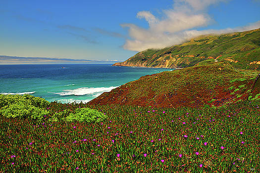 Big Sur Spring by Greg Norrell