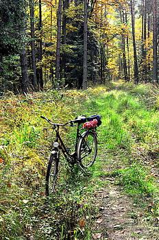 Henryk Gorecki - Bike in the Forest