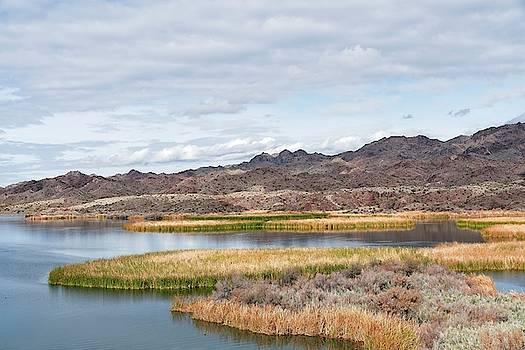 Bill Williams National Wildlife Refuge Wetlands by Allan Van Gasbeck