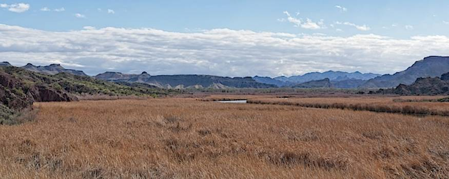 Bill Williams River Panorama by Allan Van Gasbeck