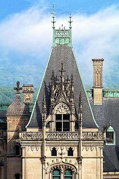 Biltmore Architectural Detail  by Carol Montoya