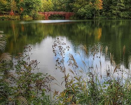 Biltmore Bass Pond by Carol Montoya