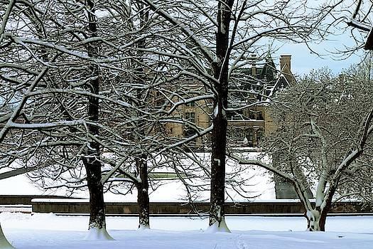 Biltmore Behind The Snow Covered Trees by Carol Montoya