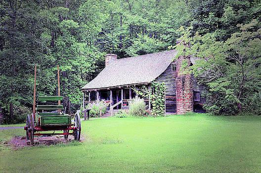 Biltmore Forest School by Savannah Gibbs