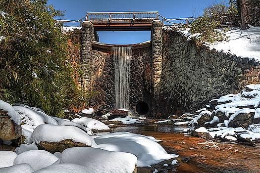 Biltmore Water Fall During Winter by Carol Montoya
