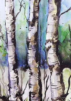 Birch Trees by Rowena Delfter