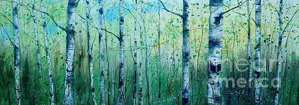 BirchPanorama by Diane Splinter