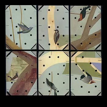 Bird crate by William Burgard