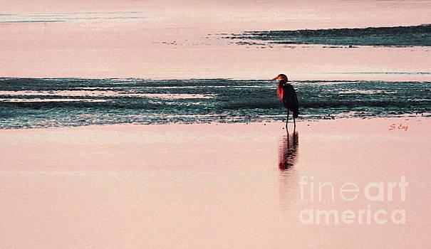 Sharon Williams Eng - Bird Watcher Watercolor 300