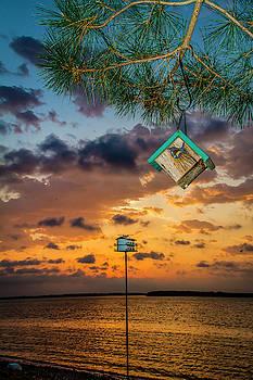Birdhouse Sunrise by David Wagenblatt