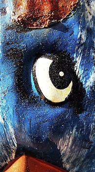 Birds Eye by Grant Osborne