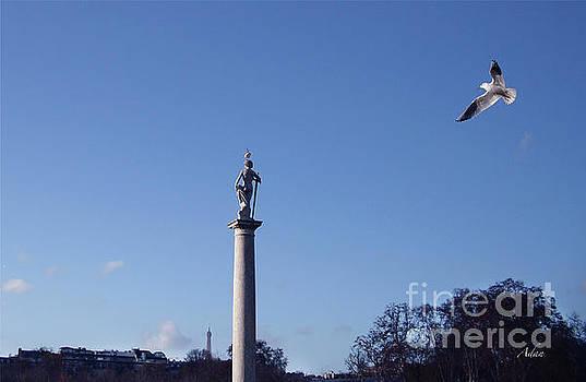Birds Eye View from Luxembourg Gardens to Eiffel Tower by Felipe Adan Lerma