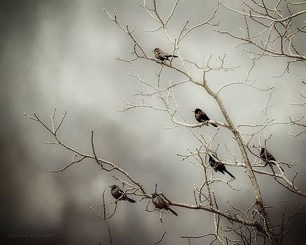 Birds On Branches by Melissa Bittinger