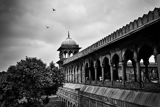 Birds over the Jama Masjid by Whitney Goodey