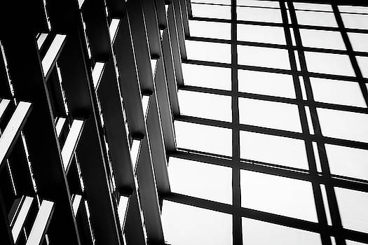 Black and White Lines - Indoor by Michael Hills