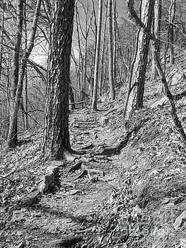Phil Perkins - Black And White Mountain Trail