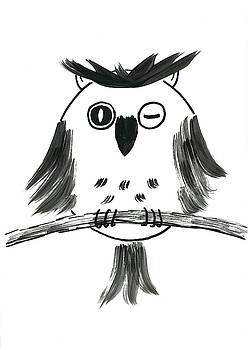 Black and white owl by Steve Clarke