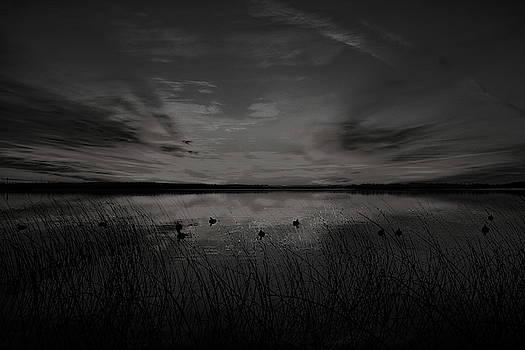 Dale Kauzlaric - Black And White Sunrise Duck Hunt